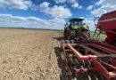 Labirynt kukurydzy w Milikowicach po raz drugi